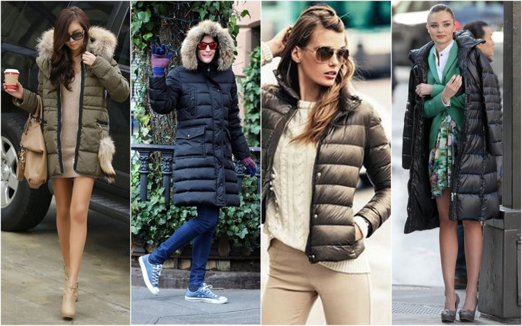 padded coat plumiferos